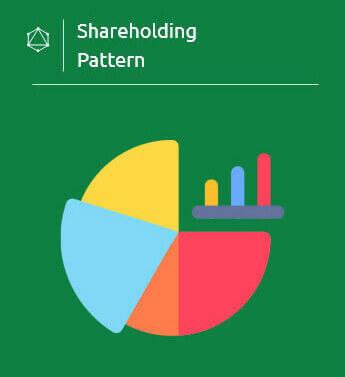 Shareholding Patterns